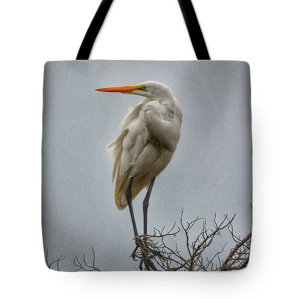 Looking Tote Bag