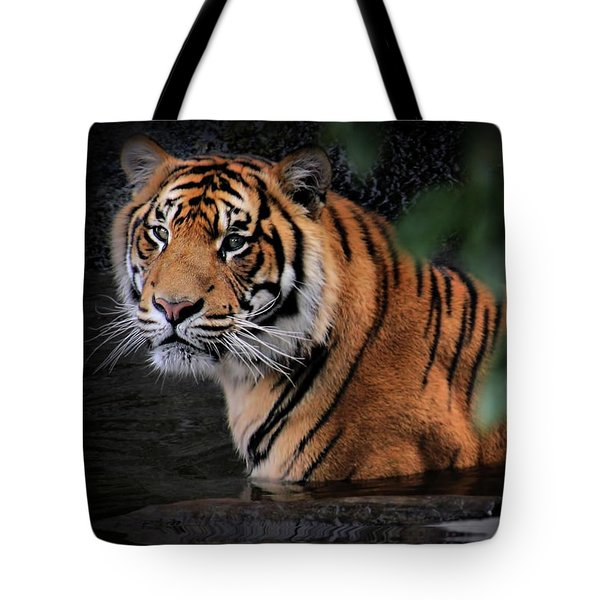 Looking Oh So Sweet Tote Bag