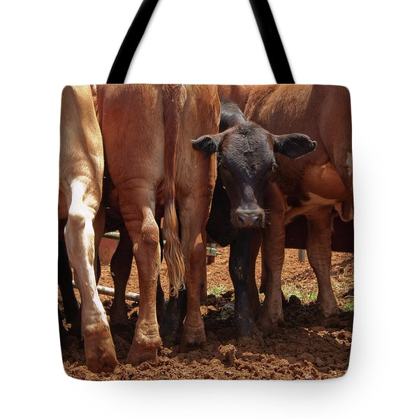 Tote Bag featuring the photograph Looking Out The Rear by Roger Mullenhour