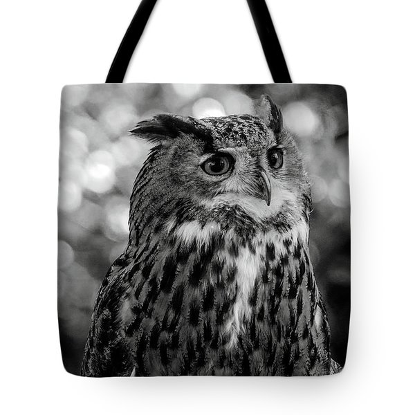 Tote Bag featuring the photograph Looking Owl  by Cliff Norton