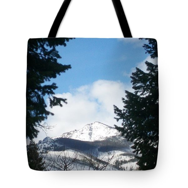 Looking Through Tote Bag by Jewel Hengen