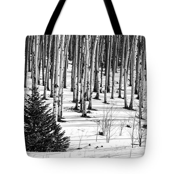 Looking Through The Aspen Black And White Tote Bag