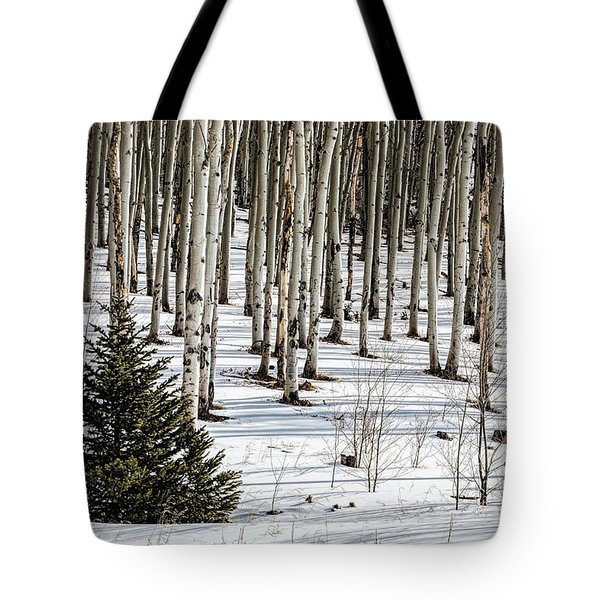 Looking Through The Aspen Tote Bag