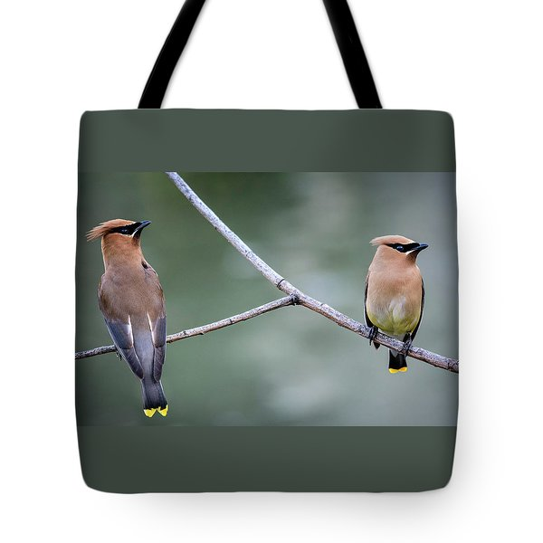 Looking To The Right Tote Bag