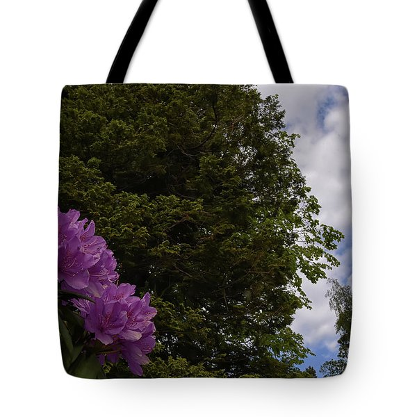 Looking To The Sky Tote Bag