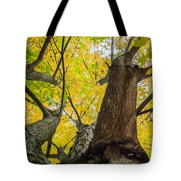Tote Bag featuring the photograph Looking Up - 9682 by G L Sarti