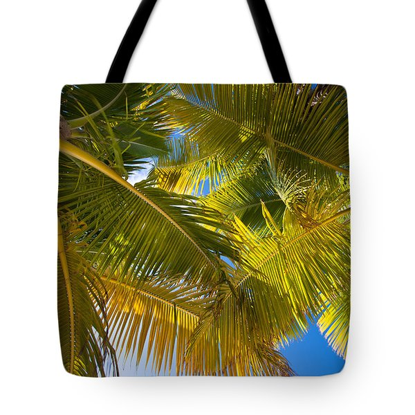 Looking Up Tote Bag by Adam Romanowicz