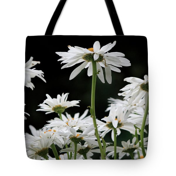 Looking Up At At Daisies Tote Bag