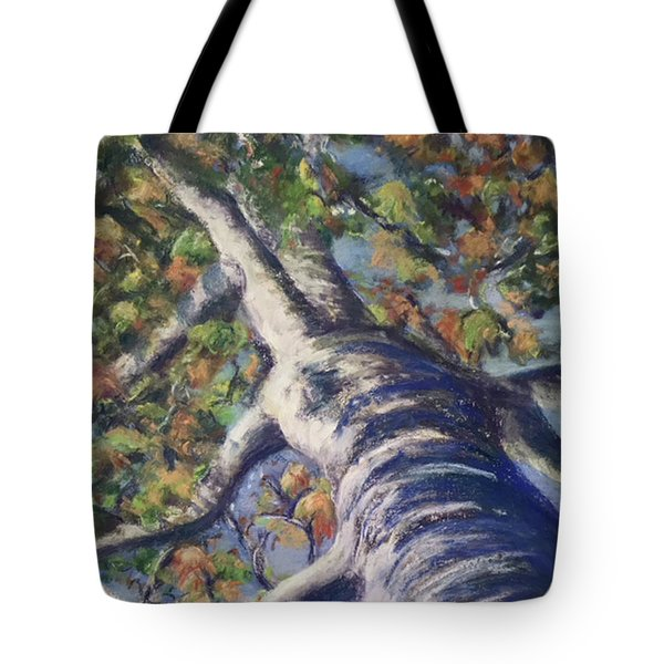 Looking Up - Fall Tote Bag
