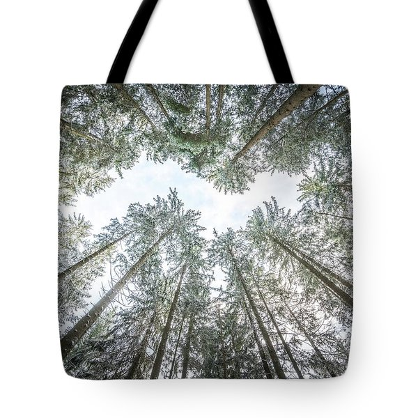 Tote Bag featuring the photograph Looking Up In The Forest by Hannes Cmarits