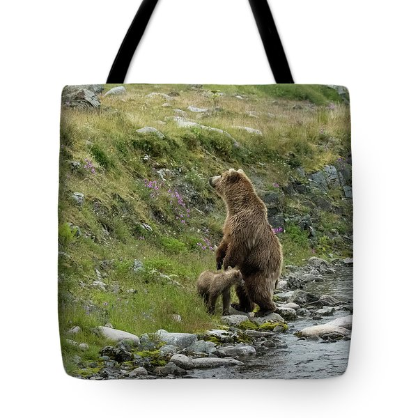 Looking Up The Bluff Tote Bag