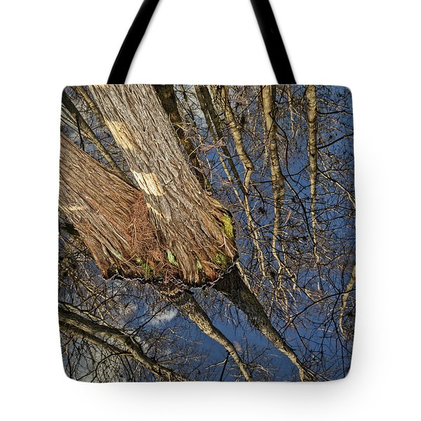 Tote Bag featuring the photograph Looking Up While Looking Down by Debra and Dave Vanderlaan