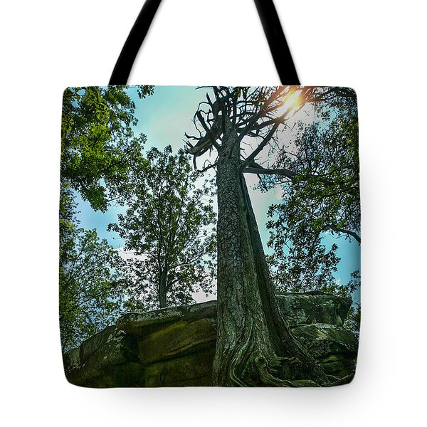 Tote Bag featuring the photograph Lookout Mountain, Tn by Don Olea