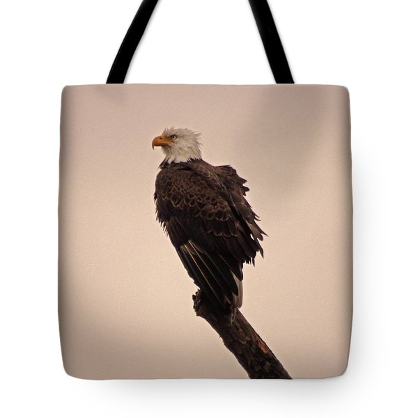 Tote Bag featuring the photograph Looks Like Reign by Robert Geary