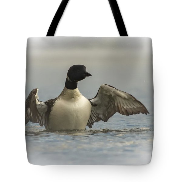 Loon 1 Tote Bag