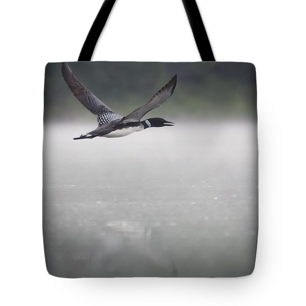 Loon 2 Tote Bag