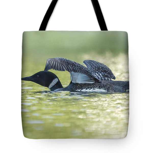 Loon 5 Tote Bag