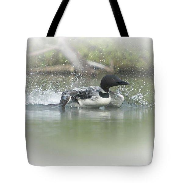 Loon 6 Tote Bag