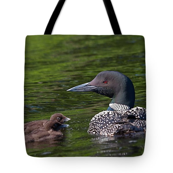 Loon Afternoon Tote Bag by Peter Gray