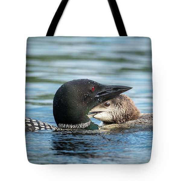 Loon And Chick Cuddling Tote Bag