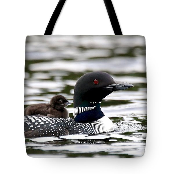Loon Chick Tote Bag