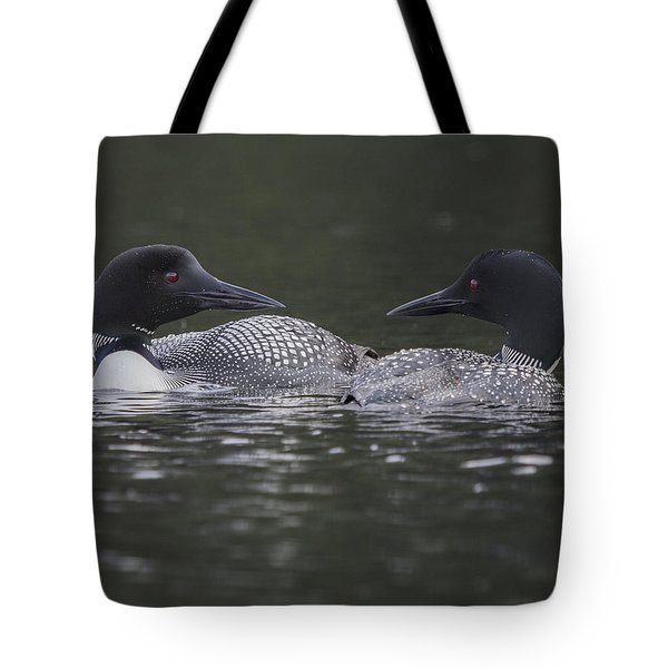 Loon Pair Tote Bag