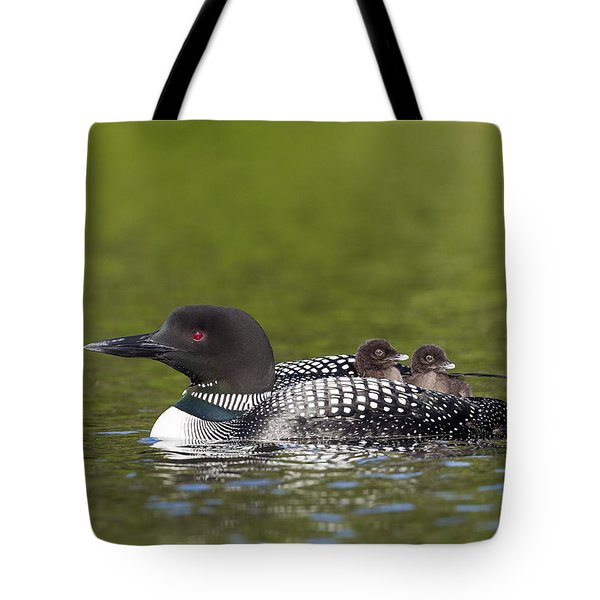 Loon Taxi Tote Bag