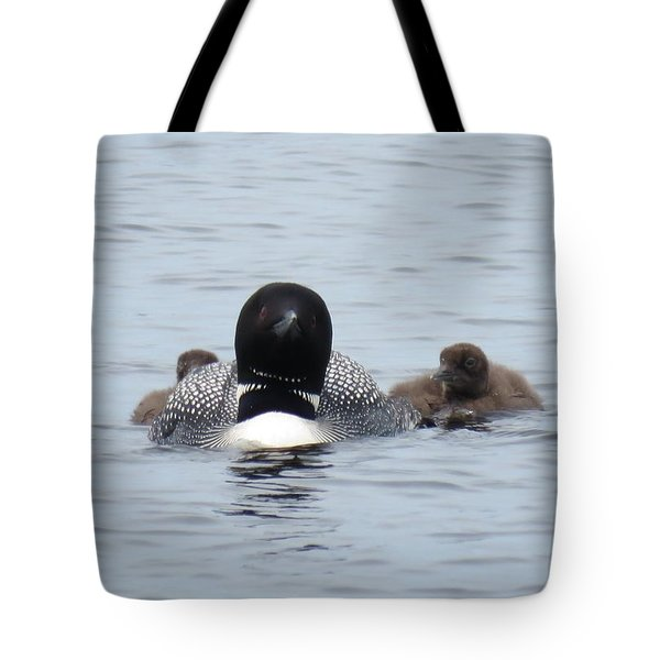 Tote Bag featuring the photograph Loon With Chicks by Sandra LaFaut