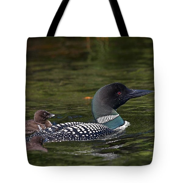 Loons Tote Bag by Peter Gray