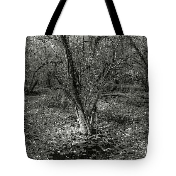 Loop Road Swamp #3 Tote Bag