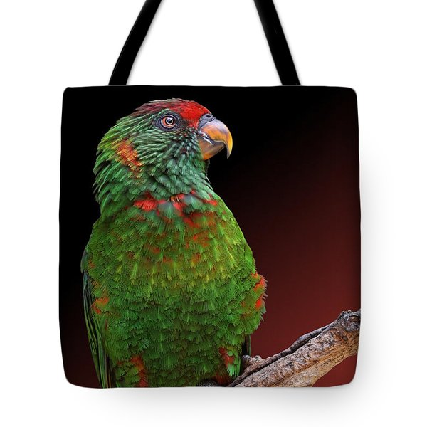 Lorikeet Portrait Tote Bag