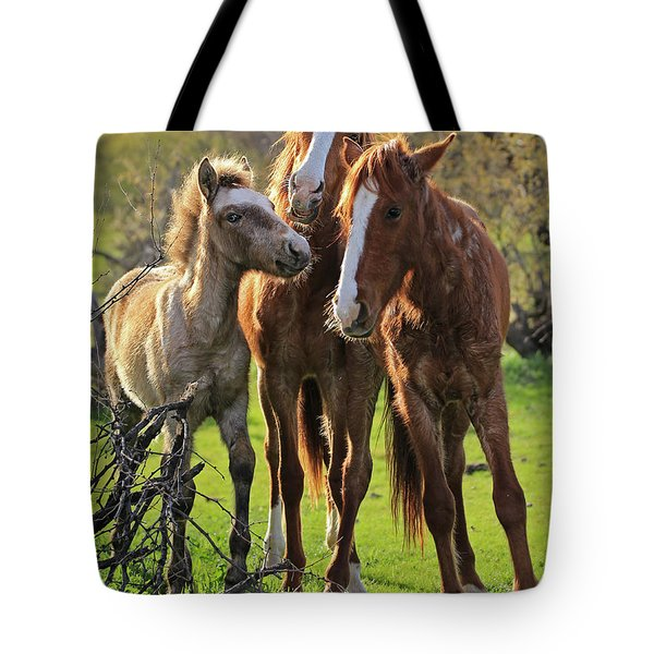 Amigos Tote Bag by Sue Cullumber