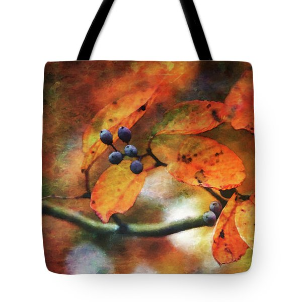 Lost Autumns Beauty 6570 Ldp_2 Tote Bag