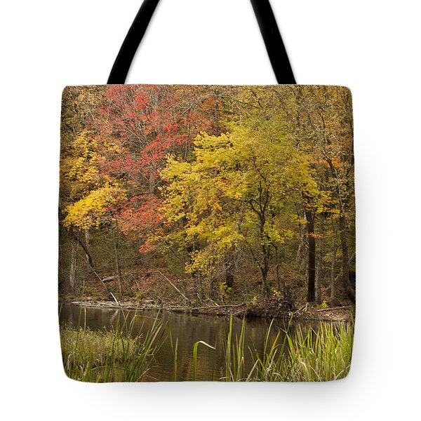Lost Creek Autumn Tote Bag