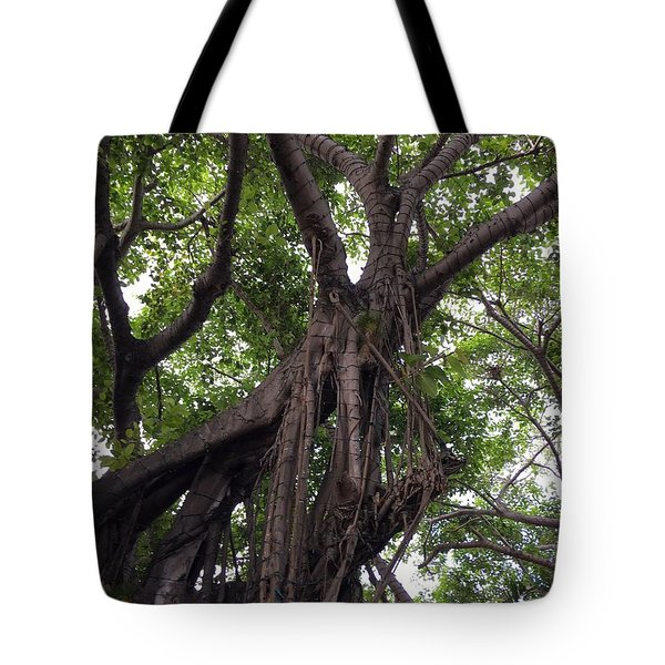 Lost In The Branches Tote Bag
