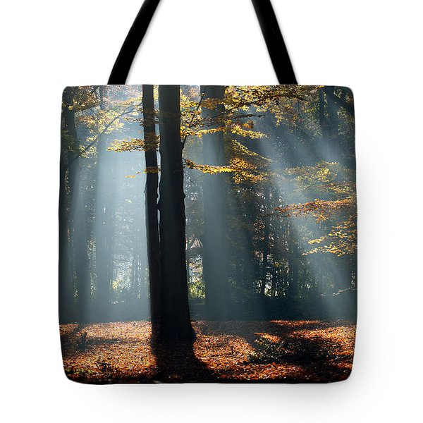Lost In The Light Tote Bag
