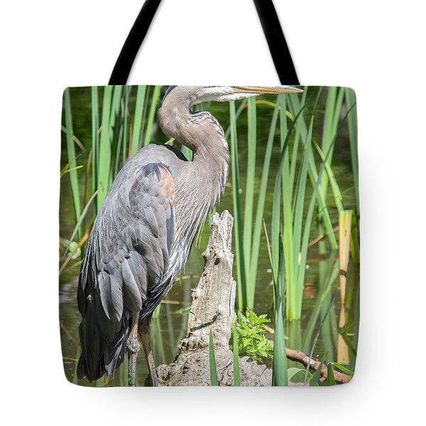 Lost Lagoon Heron Tote Bag by Ross G Strachan