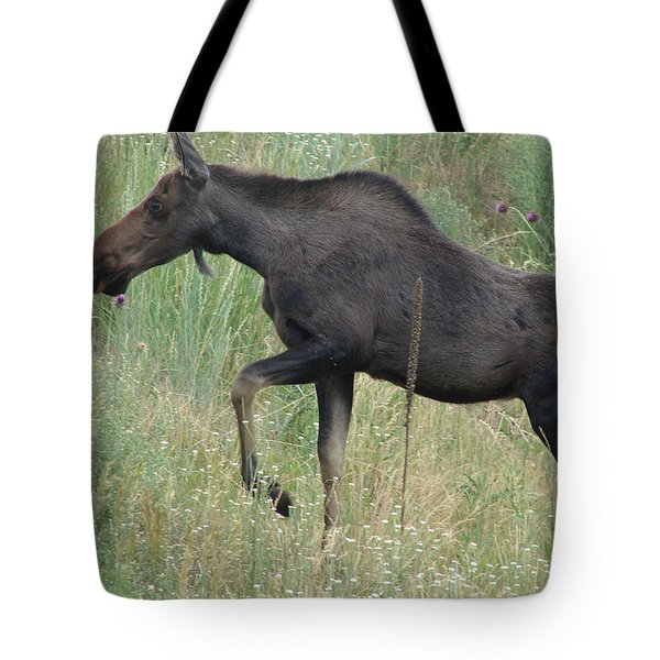 Lost Moose On The Loose In Evergreen Colorado Tote Bag