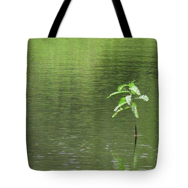 Lost Tote Bag by Rosalie Scanlon