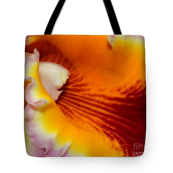 Lotsa Color Tote Bag by Sabrina L Ryan