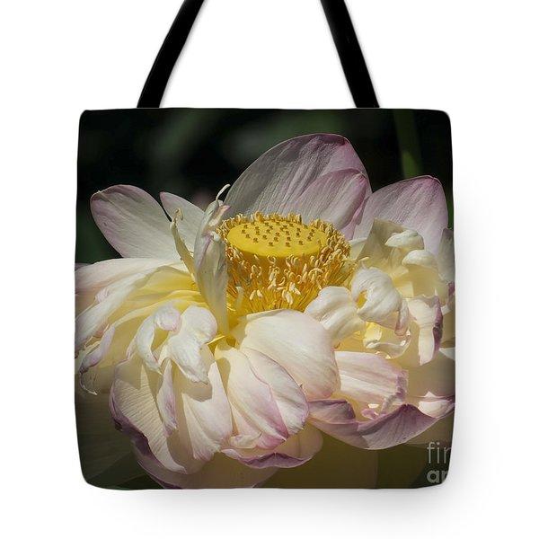 Lotus 2015 Tote Bag