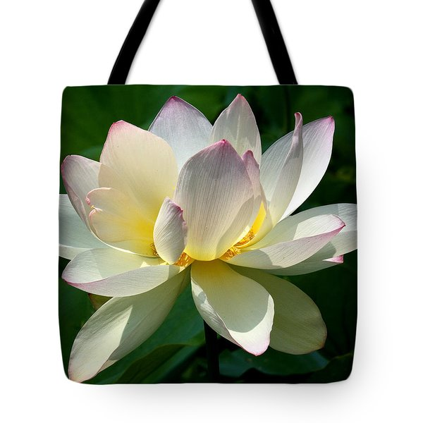 Lotus Beauty--disheveled Dl061 Tote Bag