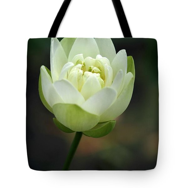 Tote Bag featuring the photograph Lotus Blooming by Sabrina L Ryan