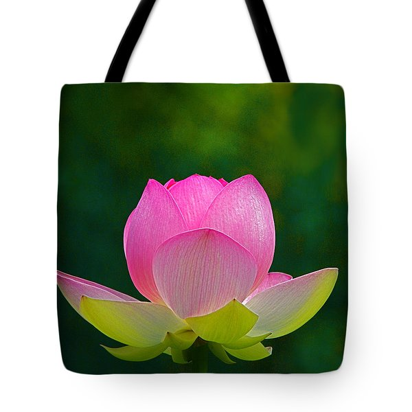 Tote Bag featuring the photograph Lotus Blossom 842010 by Byron Varvarigos