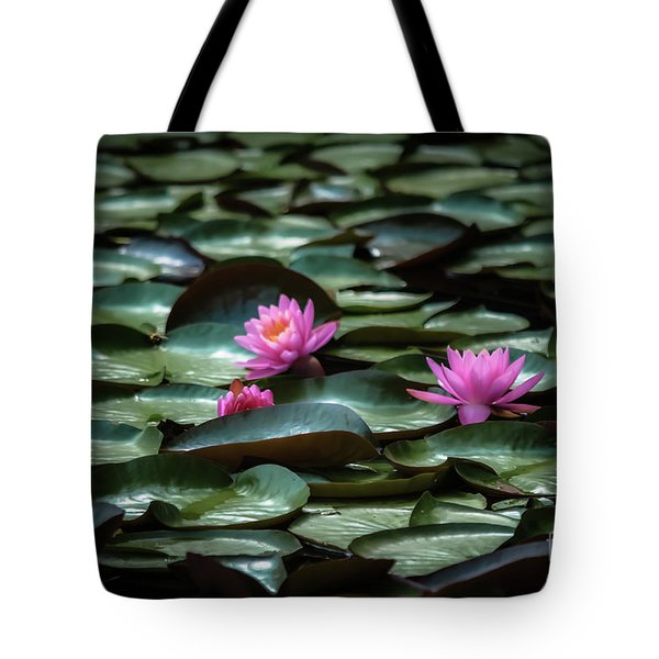 Tote Bag featuring the photograph Lotus by Brenda Bostic