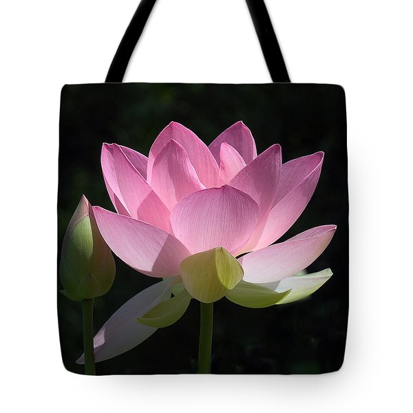 Lotus Bud--snuggle Bud Dl005 Tote Bag