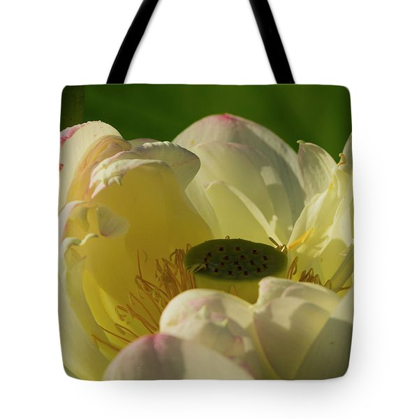 Tote Bag featuring the photograph Lotus Flower 4 by Buddy Scott