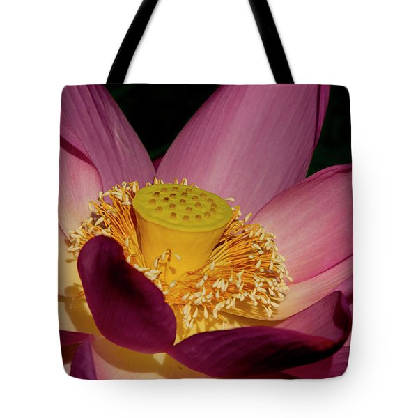 Tote Bag featuring the photograph Lotus Flower 6 by Buddy Scott
