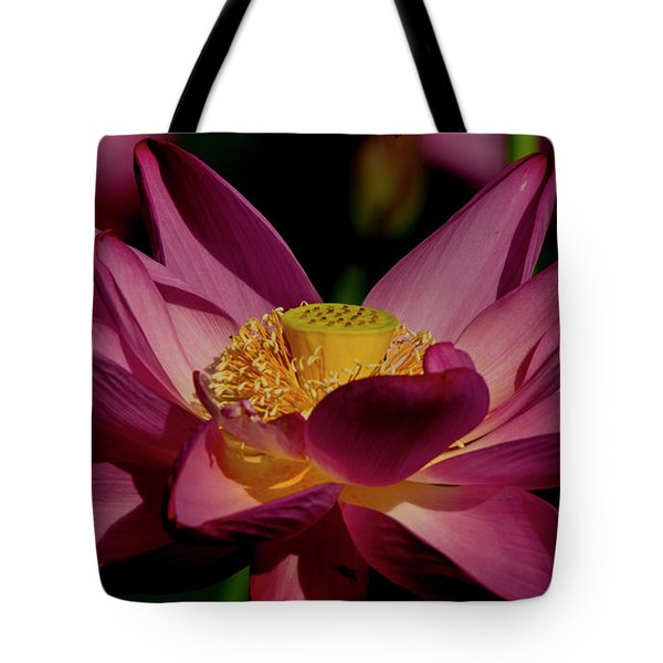 Tote Bag featuring the photograph Lotus Flower 7 by Buddy Scott