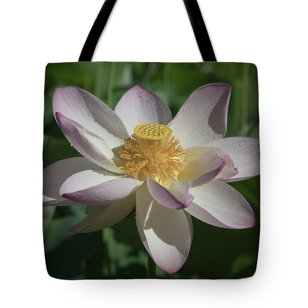 Lotus Flower In Bloom Tote Bag